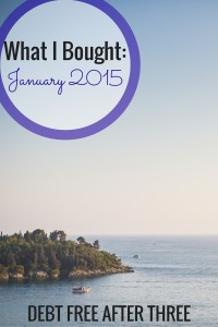 This is what I bought in January 2015. What did you buy?